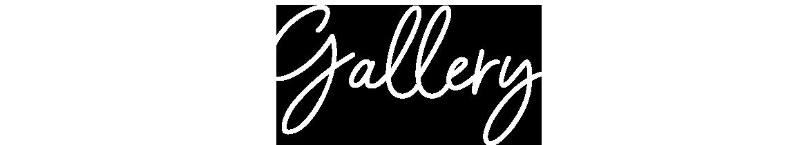gallery-header-text